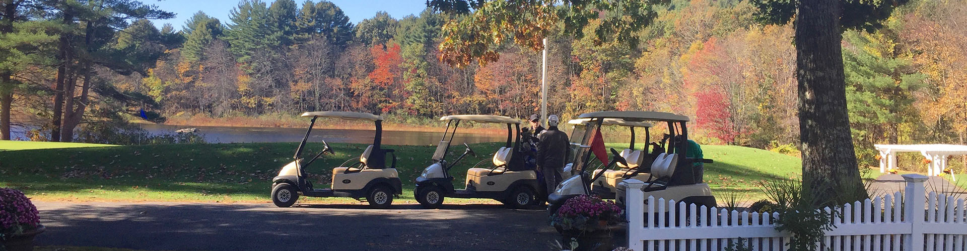 A fleet of golf carts is lined up for riding