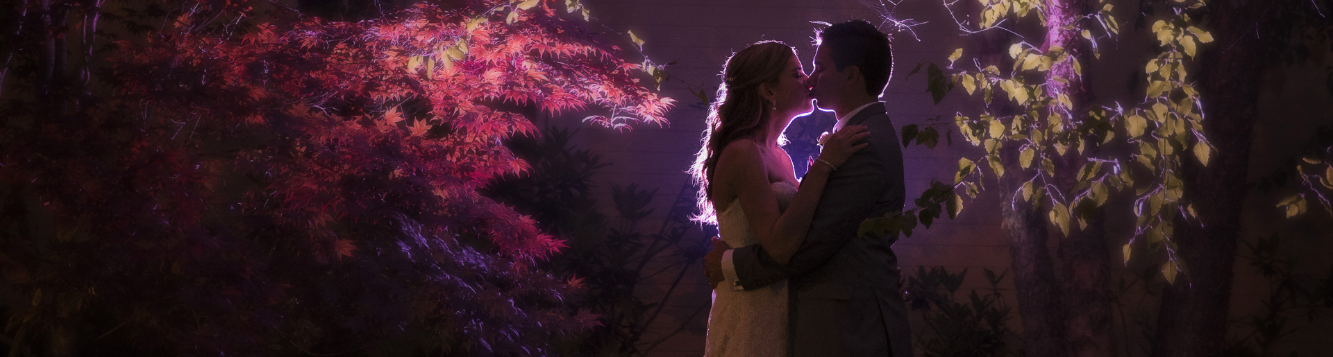 A newlywed couple kisses amongst trees at Butternut Farm
